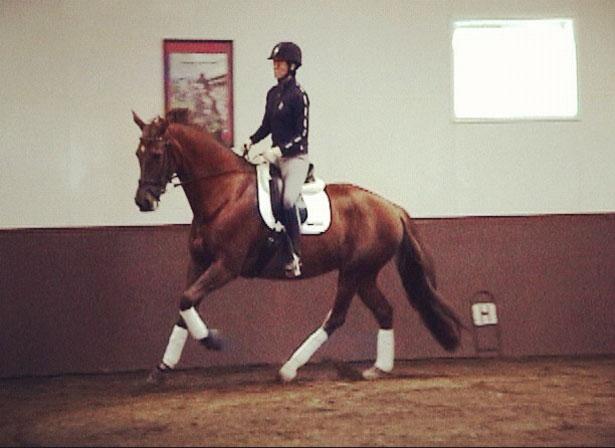 Deborah and Verona in a lesson with Conrad Schumacher last Fall